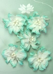 Green Tara Apple Blossoms 5pk ~ White/Turquoise | Always Treasured Scrapbooking