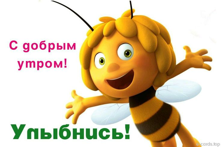 Пчелка майя открытки