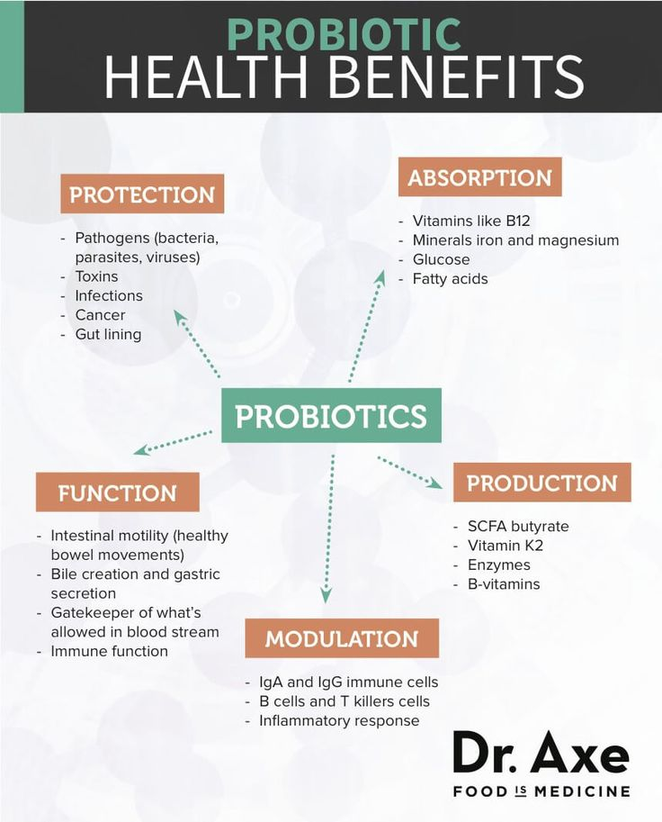 What Are Probiotics? The Complete Probiotic Beginner's Guide