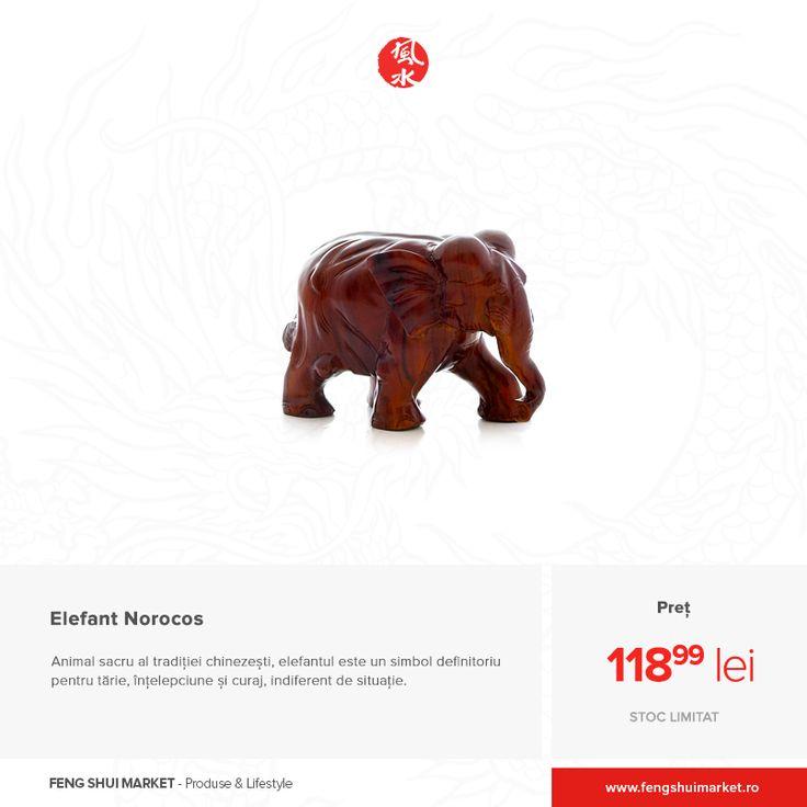 Acest animal este adorat și onorat în multe dintre culturile lumii, în budism fiind unul dintre cele 8 animale sfinte. De asemenea, Zeul Indian Ganesha este întruchipat ca având capul unui elefant, semn al măreției. Din acest motiv, elefantul are capacitatea de a te proteja de energiile negative și de a îți aduce noroc pe plan personal sau profesional. Achiziționează statueta din rășină chiar acum: http://bit.ly/statueta-elefant