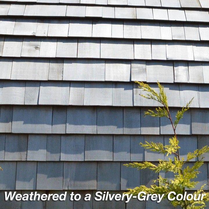 Серебро - Серый Западный Красный Кедр черепица