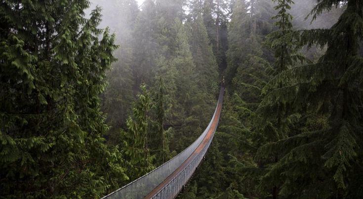 Credit kaiyhunshutterstockthis canadian bridge is 214