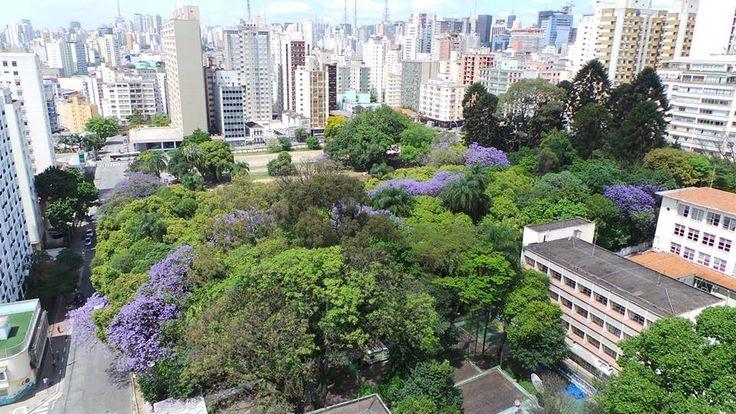 Ministério Público investiga decisão que autoriza prédios no terreno do Parque Augusta - Notícias - R7 São Paulo