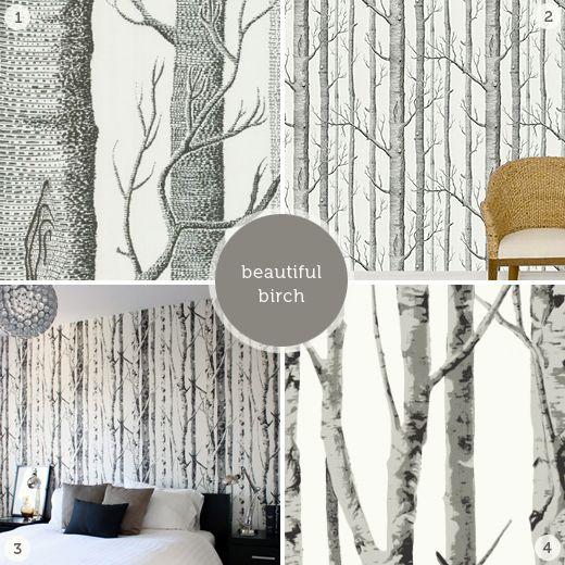 Best 25 Birch Tree Wallpaper Ideas On Pinterest Tree Wallpaper Love Tree Paper Wallpaper And