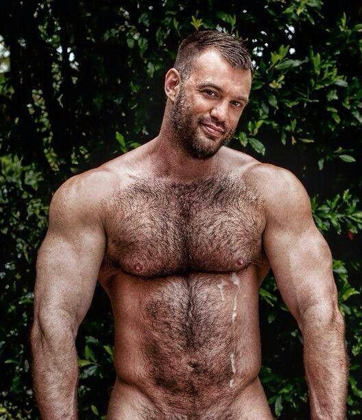 hairy bears.com