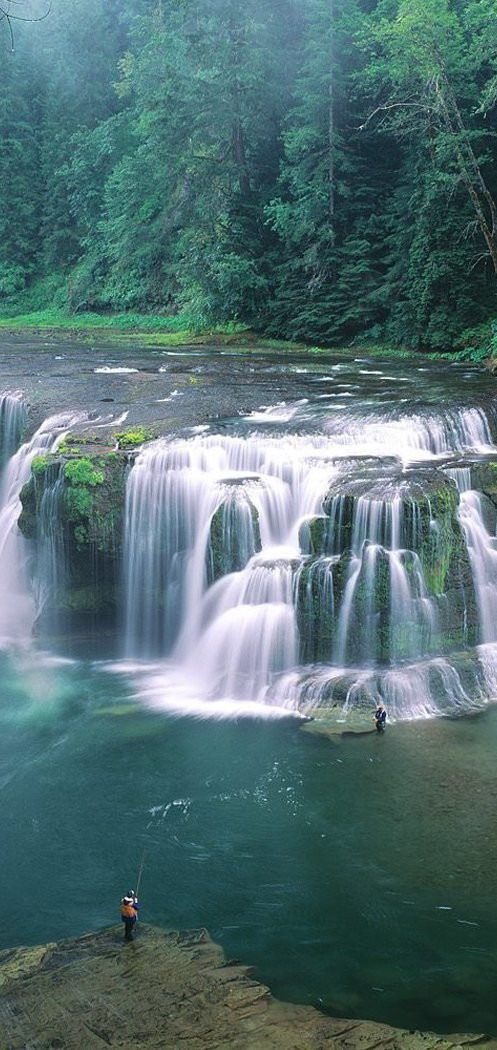 Salmon or Steelhead fishing Lower Lewis River Falls ~ Gifford Pinchot National Forest, Washington State