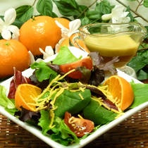 Orange Vinegrette Dressing.  Yield: about 3 cups  3/4 cup cider vinegar  3/4 cup Mandarin orange juice,  2 Tablespoons red wine vinegar or good quality balsamic vinegar,  2-3 Tablespoons brown sugar,  1 shallot clove, minced,  1/4 teaspoon kosher salt, or to taste,  1-1/2 cups extra virgin olive oil.  Mix with hand blender. Add oil slowly, as the last ingredient.