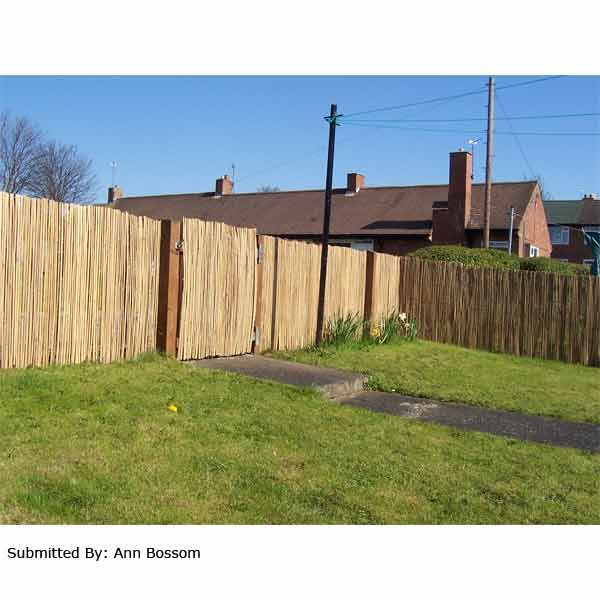 Terra Split Bamboo Fencing Screening Rolls On Sale Fast Delivery