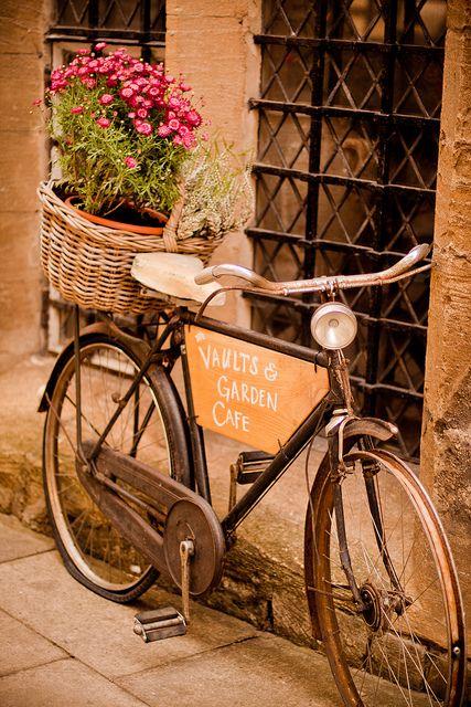 Vaults & Garden Cafe, Oxford