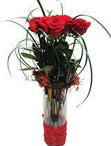 enviar flores san valentin en zaragoza