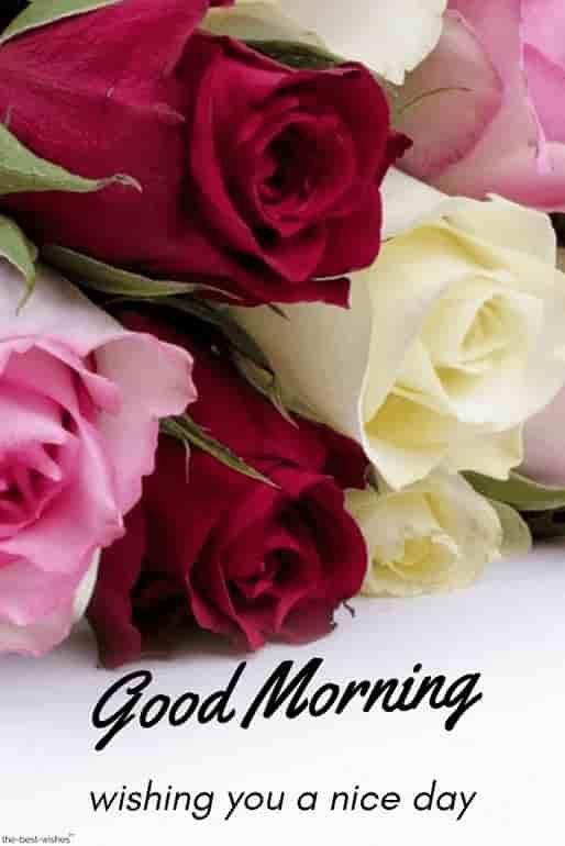 best good morning hd