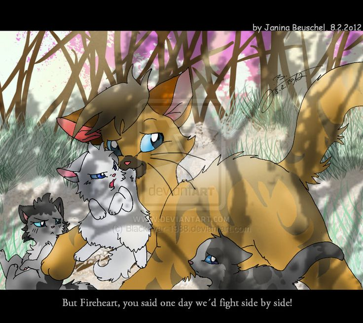 Warriors Fire And Ice Book: 19 Best Warrior Cats Images On Pinterest