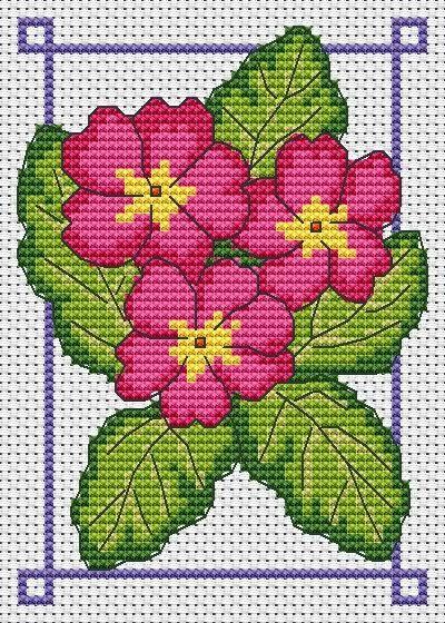 March free chart polyanthus pink and mauve   Amanda Gregory cross-stitch design