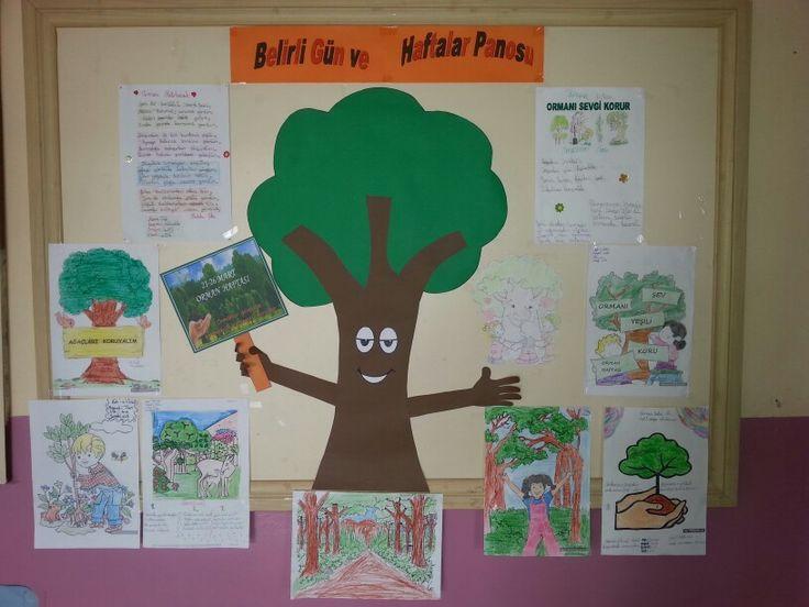 Orman haftasi okul panosu