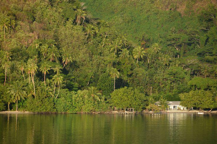 Le rêve polynésien | Lune de miel insolite en Polynésie  #Polynesie #Polynesia #Luxe #Tahaa  #Island #honeymoon #Lagoon #Green #Island #Snorkeling #Love