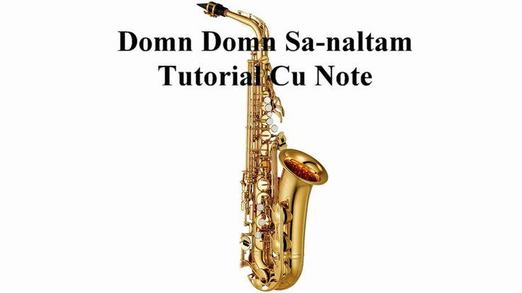 Domn Domn Sa-naltam - Tutorial Cu Note