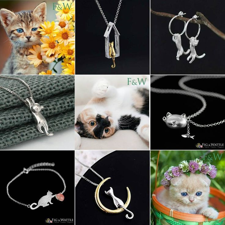 We're all about cats this week at Fig & Wattle. Young, old, affectionate, aloof we ❤ them all. www.figandwattle.com.au/collections/the-cat-collection 🐈🐱🐹 #cat #kitty #kitten #meow #drchrisbrown #animalrescue #welovecats #lovecats #catsforever #jewellery #silver #fashion