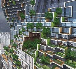 Le fattorie verticali e il futuro dell'agricoltura urbana   EnergoClub