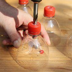 Anzuchttöpfe mit Bewässerungssystem aus PET-Flaschen basteln