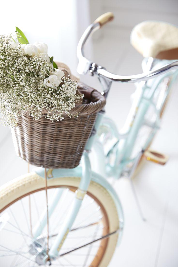 Ride into Spring!