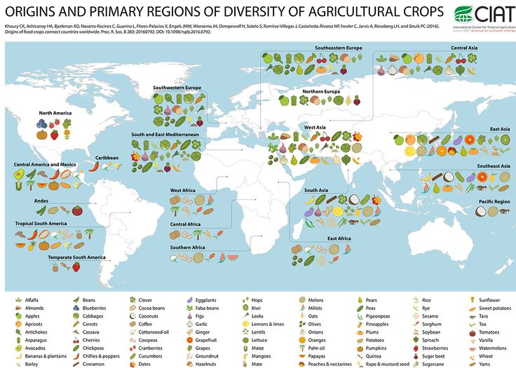 print_origin-species-world-map-v9_hires_poster-en.jpg ...