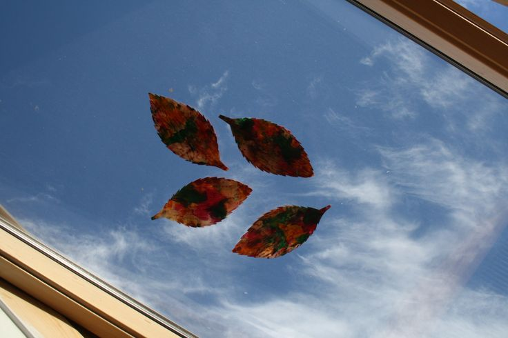 Barevné listy na okno, Coloured leaves