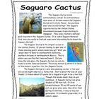 This is a great addition to any desert habitat study.  It is a 4 page informational text including facts about the saguaro Cactus.  It includes col...