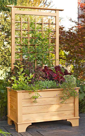 25 best ideas about trellis fence panels on pinterest for Trellis planter garden screen