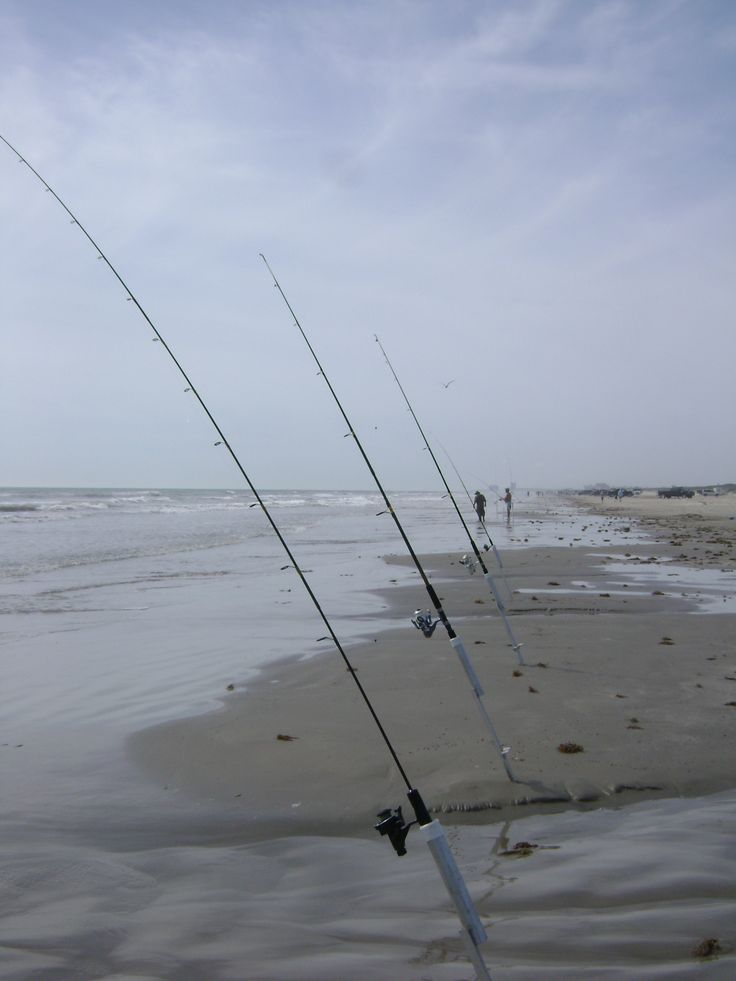 375 best surf fishing images on pinterest fishing stuff for Best time to go saltwater fishing