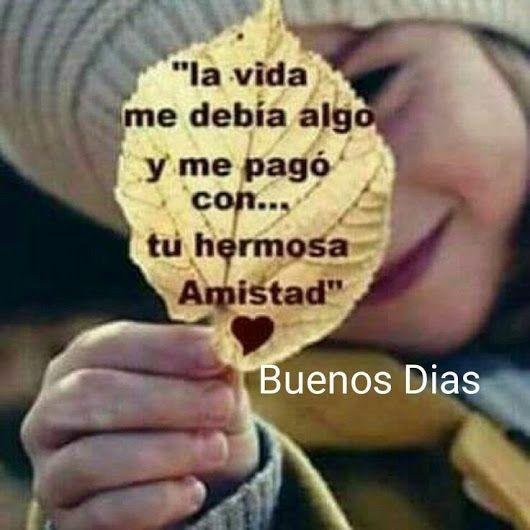 Buenos días mis bellas que su día este lleno de bendiciones, gracias le doy a dios por tu linda amistad ⚘ - Carmen Margarita - Google+