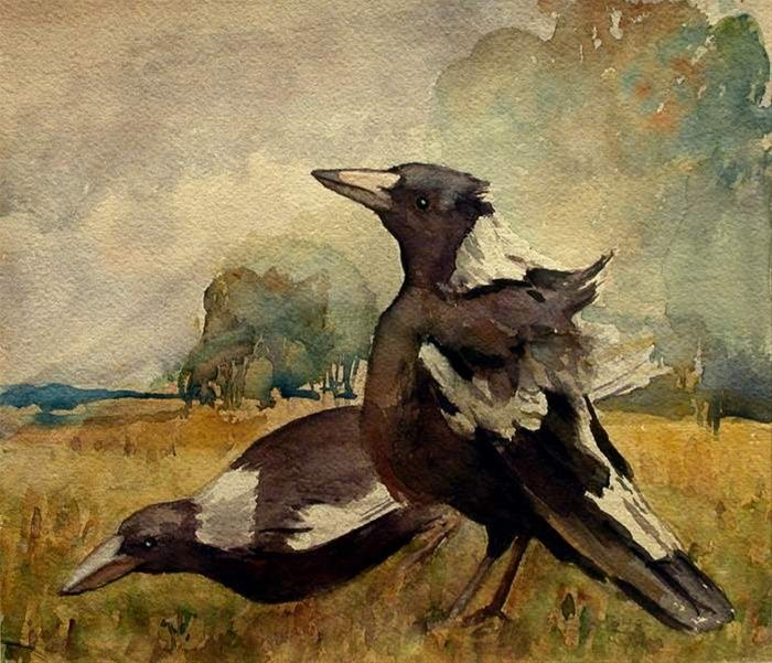 Sydney Long Magpies not dated watercolour on paper