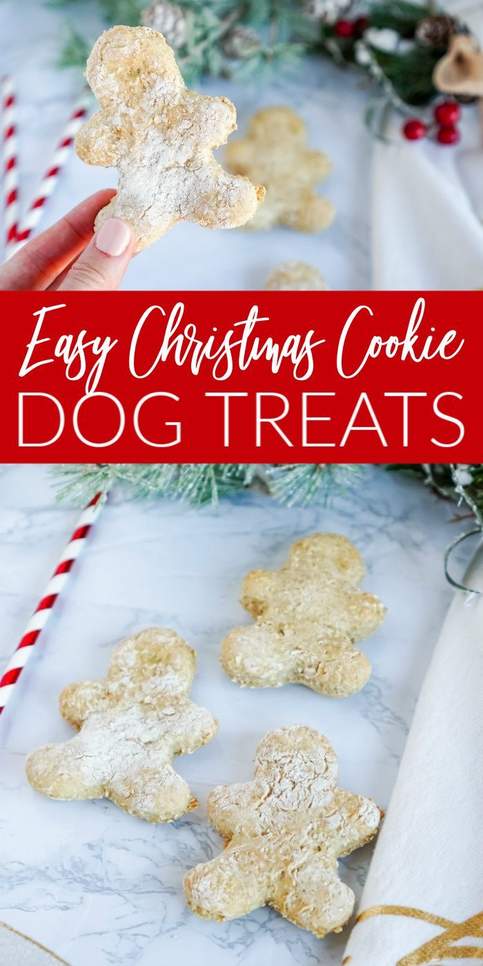 Homemade Christmas Cookie Dog Treats Recipe Dog Cookie Recipes