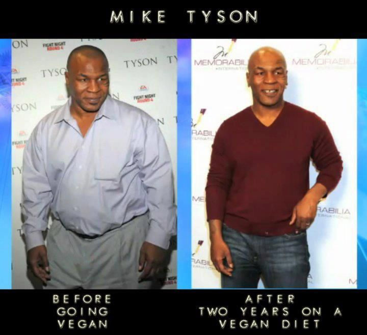 VEGAN BEFORE & AFTER MIKE TYSON. Before and after transitioning to a vegan diet.