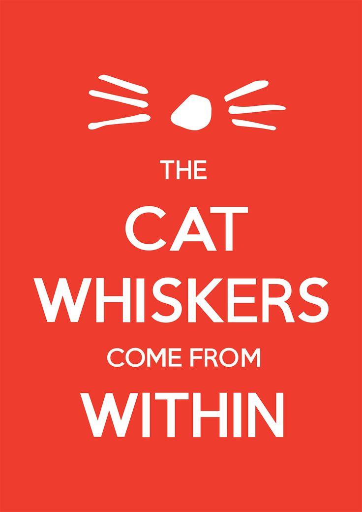 Whiskers Poster Dan and Phil danisnotonfire amazingphil