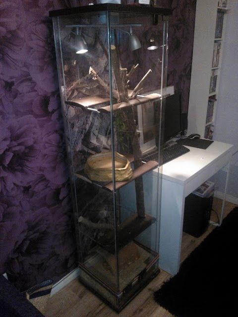 Ikea Hackers Ikea Detolf Vivarium Hack Dragons