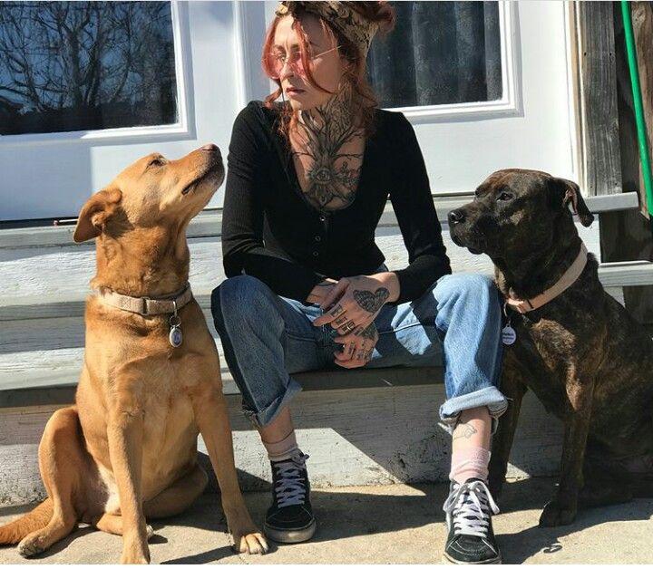 Pin By Gypsyfaith Gilbert On Mariah And Tania Torres Pitbulls Animal Planet Pit Bulls Parolees