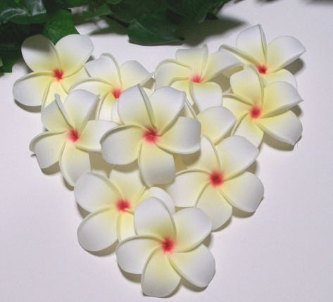 Foam Life Like Frangipani Heads in Yellow, sold in a pack of 6. These are a fantastic decorating product, you are only limited by your imagination.