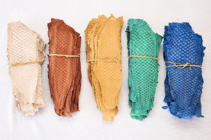 Tilapia Leather: available in over 30 colors and 4 types of finishes.