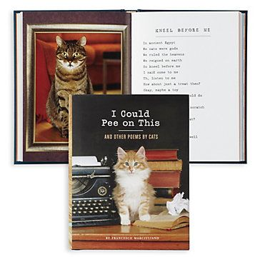 I Could Pee On This | Books & Stationery | Novelty | Decor | Z Gallerie