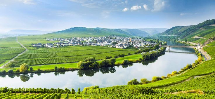 Where to Go Wine Tasting in Germany's Mosel Valley