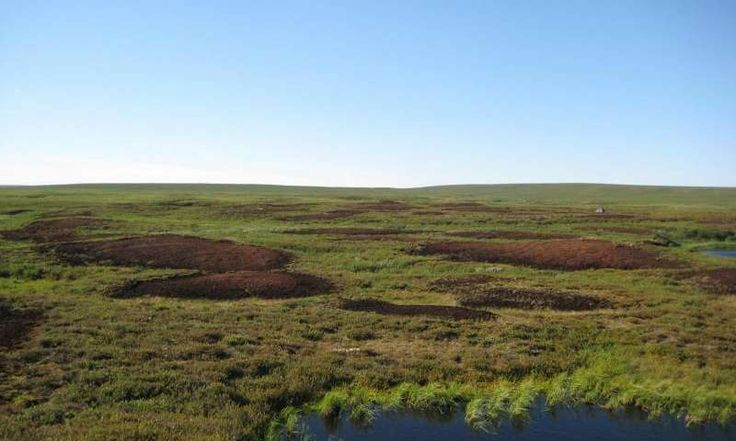 Scientists uncover isotopic fingerprint of N2O emissions from Arctic tundra