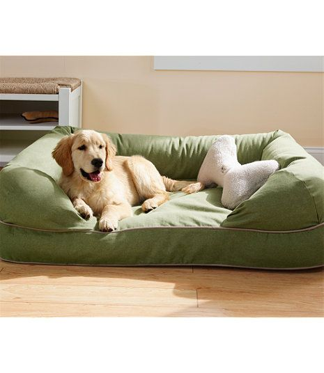 sofa style pet bed furniture protector white pillow ideas best 25+ dog couches on pinterest | one ...