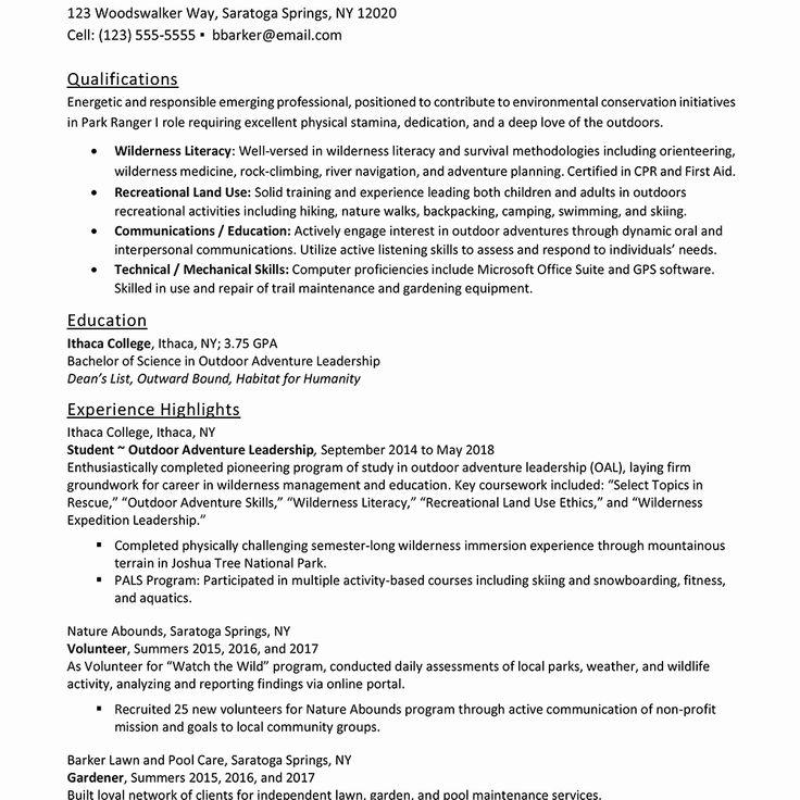 48+ Entry level job resume summary Examples