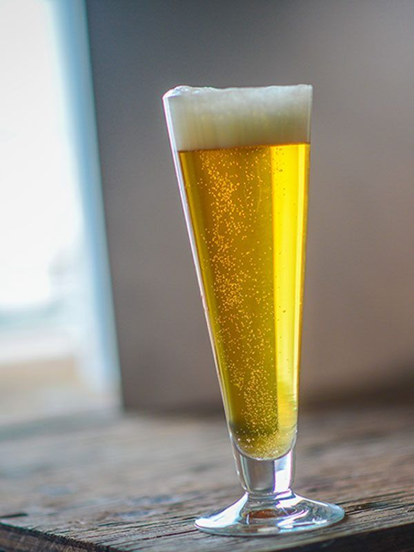 Vitoria Vienna Pilsner - Beer Recipe - American Homebrewers Association