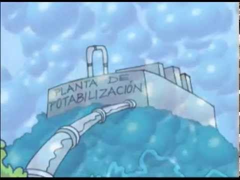 dibujos animados sobre el ciclo del agua - YouTube