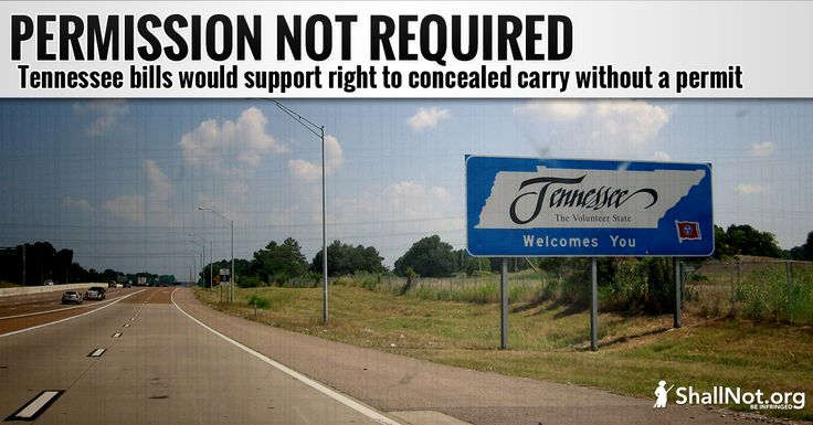 """""""Constitutional Carry"""" Filed in Tennessee"""