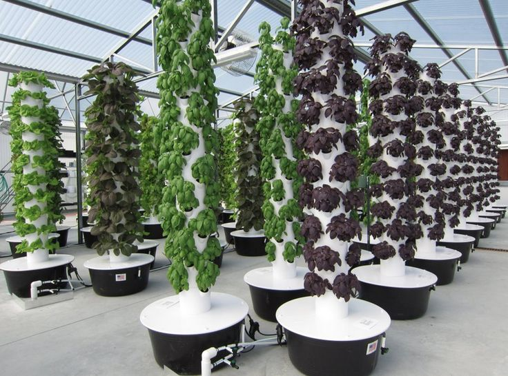 Awesome Vertical Growing   Google Search | Vertical Growing | Pinterest | Gardens,  Search And Towers