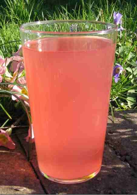 Brown's apple juice - pic. Mark Shirley.