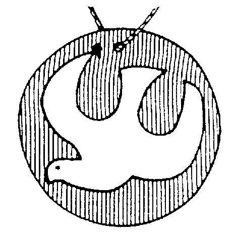 T0496.jpg (464×472)