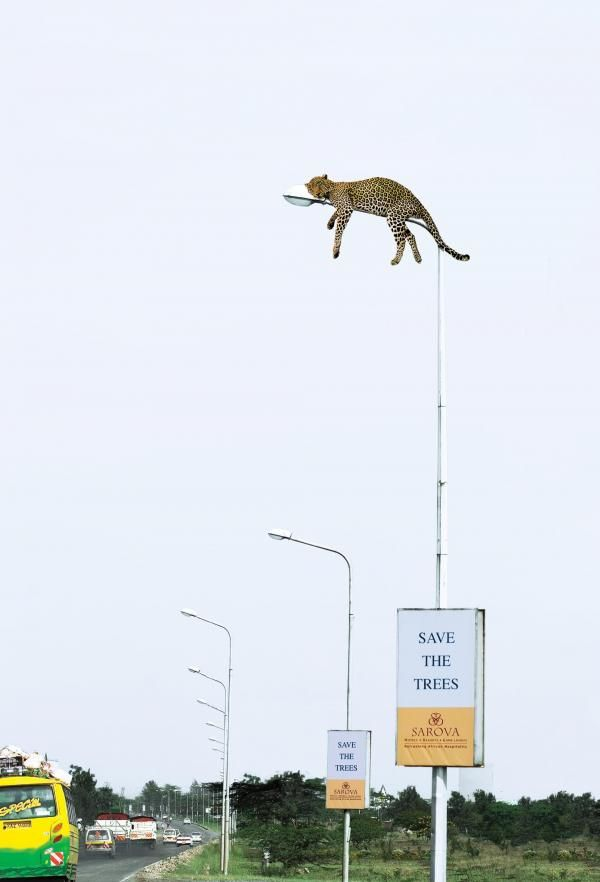 "Advertising. ""Save the trees"" LAMPPOST LEOPARD, Love it."